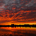 Another beautiful sunset at the marsh by Jeff Bray