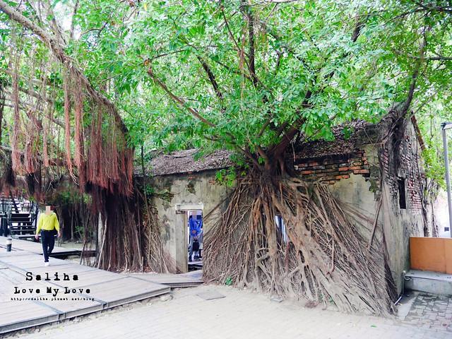 台南一日遊景點推薦安平樹屋安平老街 (14)