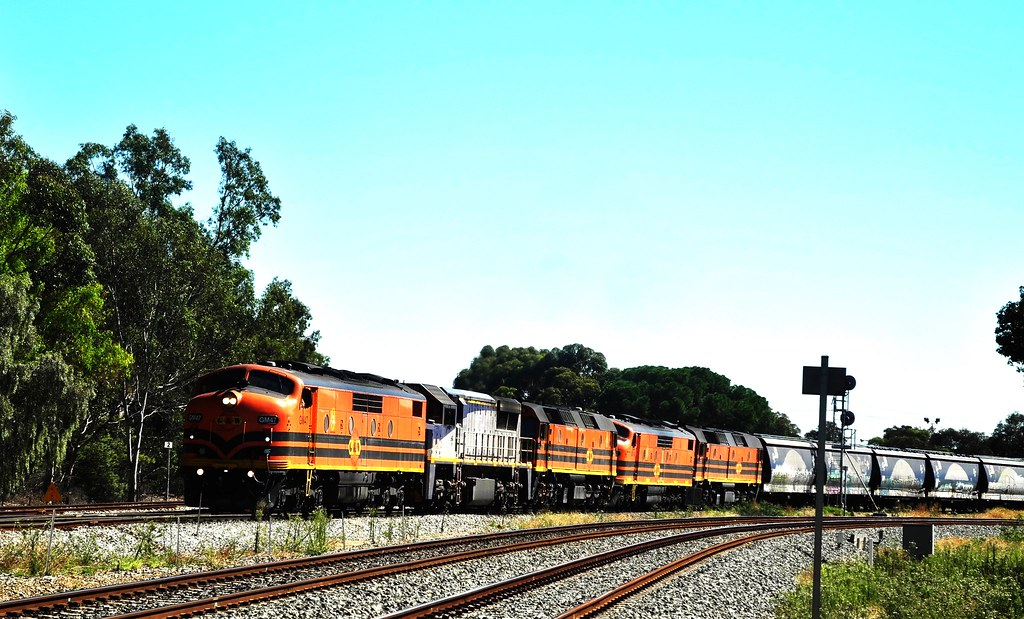 GM47, VL360,2210,GM42 and 2216 on empty grain train at North Adelaide by Rodney S300