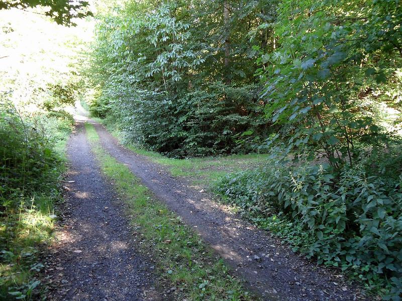 Weg zum jüdischen Friedhof in Frücht