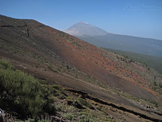 view 0010 Tenerife, Canary Islands, Spain