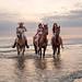 Met de paarden in zee