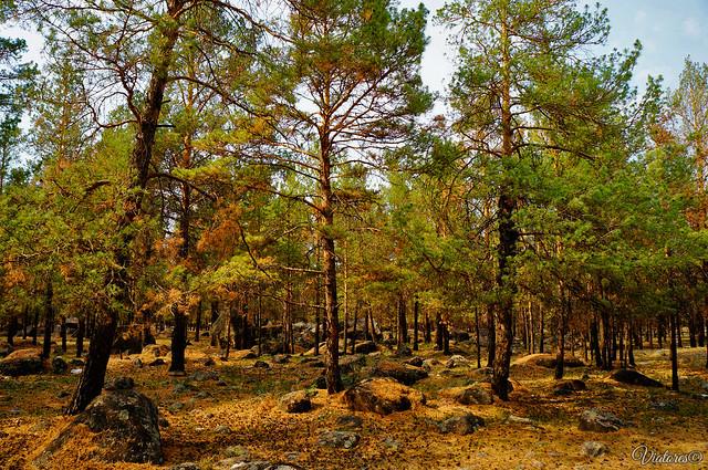 Ининский сад камней. Баргузинская долина