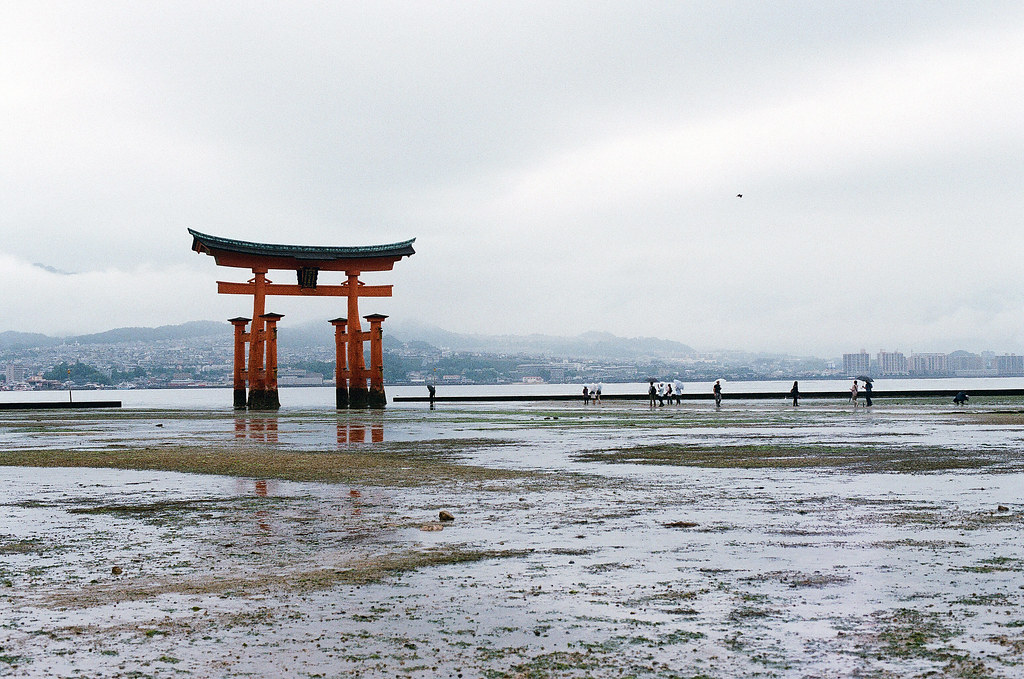 大鳥居 嚴島(Itsuku-shima)広島 Hiroshima 2015/08/31 退潮後的大鳥居,雖然地上還是有很多水攤,我還是勉強的走到大鳥居。  Nikon FM2 / 50mm FUJI X-TRA ISO400 Photo by Toomore