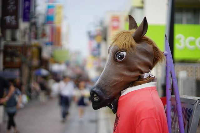 HORSE MEN?