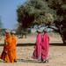 Rajasthan, Thar desert : village#3
