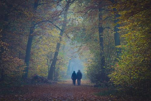 Spooky Wanderer