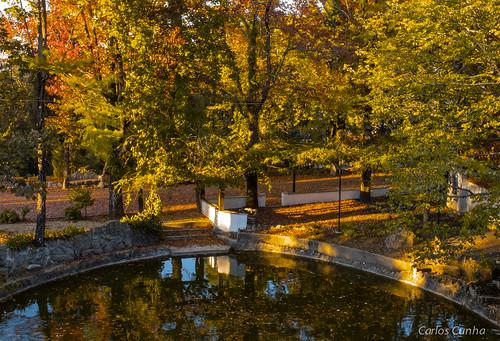 outono no parque...