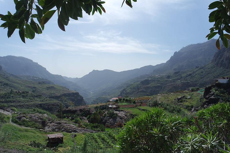 El verde corazón de Gran Canaria