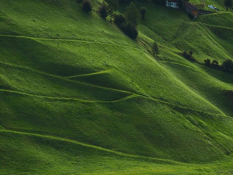 Zielone zbocze w Rein