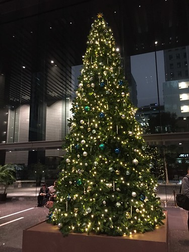 Christmas trees in Tokyo 2015