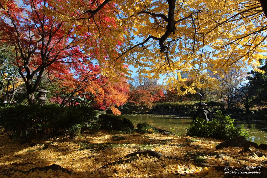 東京賞楓-日比谷公園09