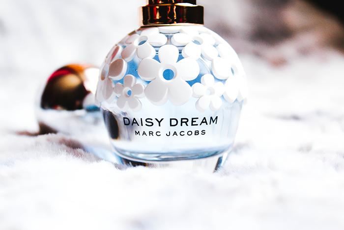 Daisy Dream 3