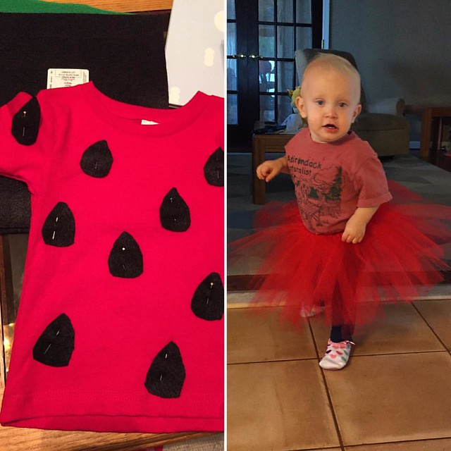 Peyton's strawberry costume is coming along! Her tutu is done and I'll be spending  the rest of my evening sewing on these seeds. Next are a few leaves for around the neck of the shirt and we should be good to go! 10.26.2016 #Peyton #diystrawberrycostume