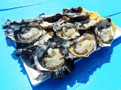 Tasmanian Oysters - Australia