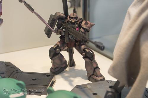 TGP2015_HSM-26