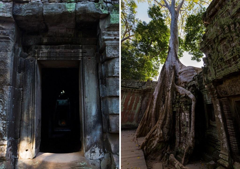 Angkor - Ta Prohm1