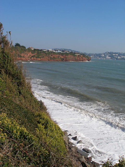 Above Hollicombe beach