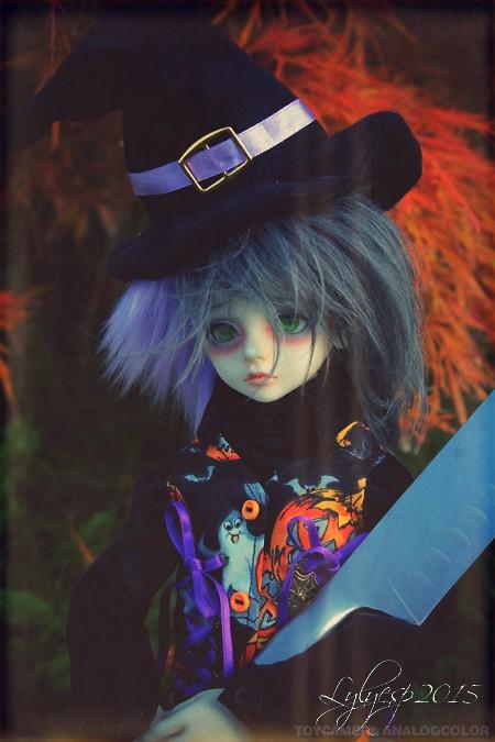 [ Shin - KDF Bory ] Cheshire chaton ? (23/12/2018) - Page 3 22281344568_563eb6189b_b