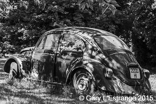 Volkswagen Beetle Bellugan Park