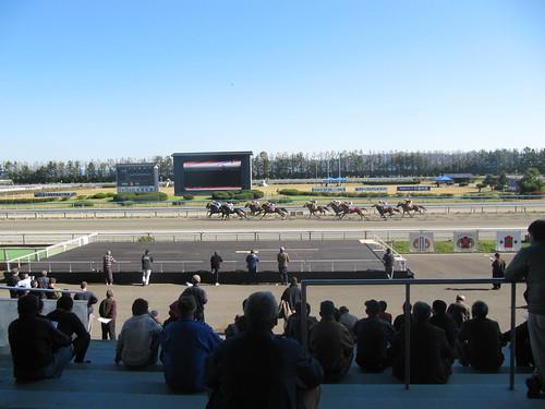 金沢競馬場の屋外スタンドから見たレース