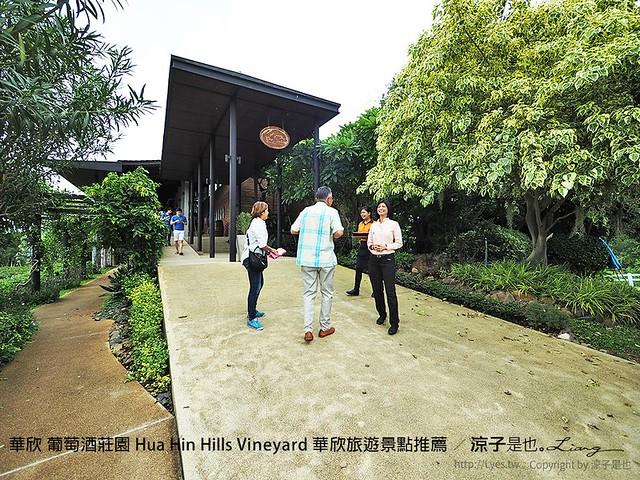 華欣 葡萄酒莊園 Hua Hin Hills Vineyard 華欣旅遊景點推薦 36