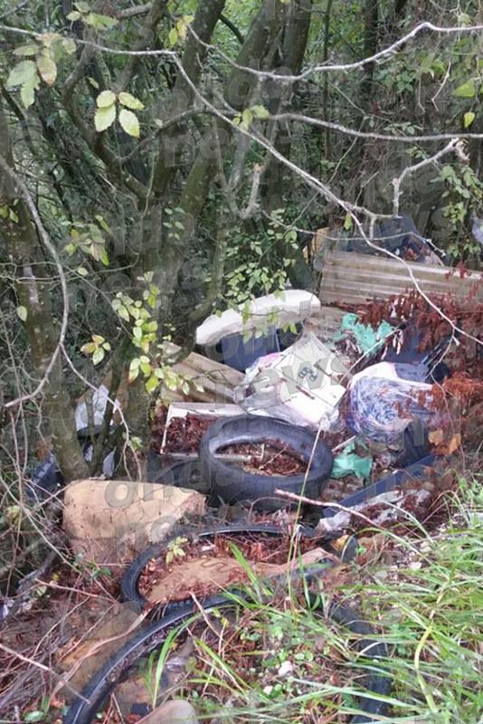 palomonte guardie ambientali 3