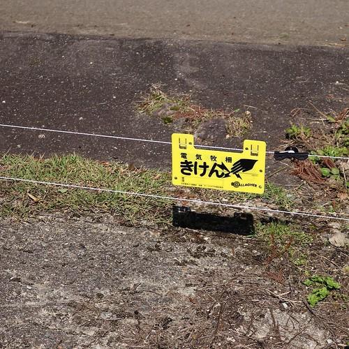 イノシシ避けの電気柵。 #なんと #南砺 #富山県