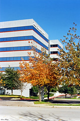 Fall Colors by Bank Building, Hurst, Texas, 1994