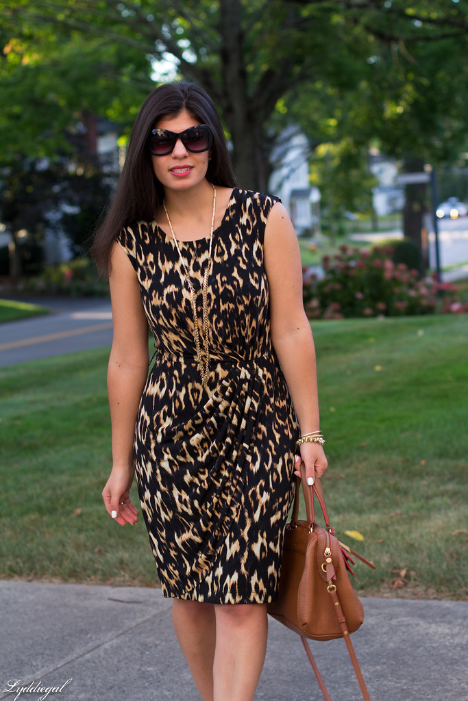 leopard dress, brown bag, platform sandals-3.jpg