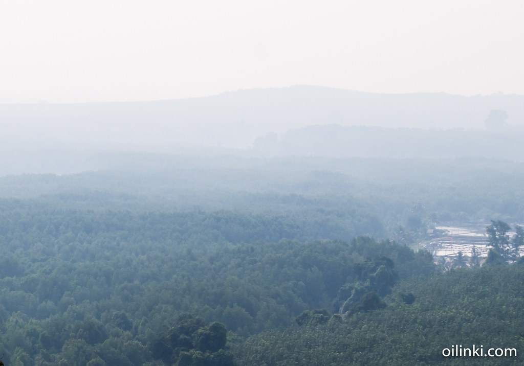 Hills covered with fog in Phuket