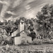 Mount Dora Old Church. (Vieja Iglesia). by Samuel Santiago
