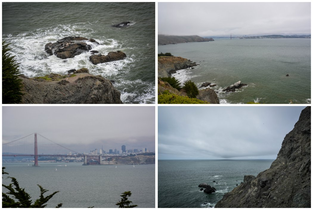 seals, storms, and the city
