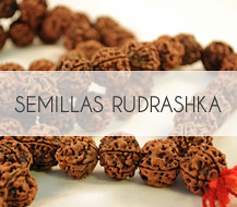 Semillas Japa Mala Rudrashka