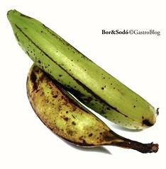 #főzőbanán, #plantain, #plátano, #cooking plantain, #banana-da-terra