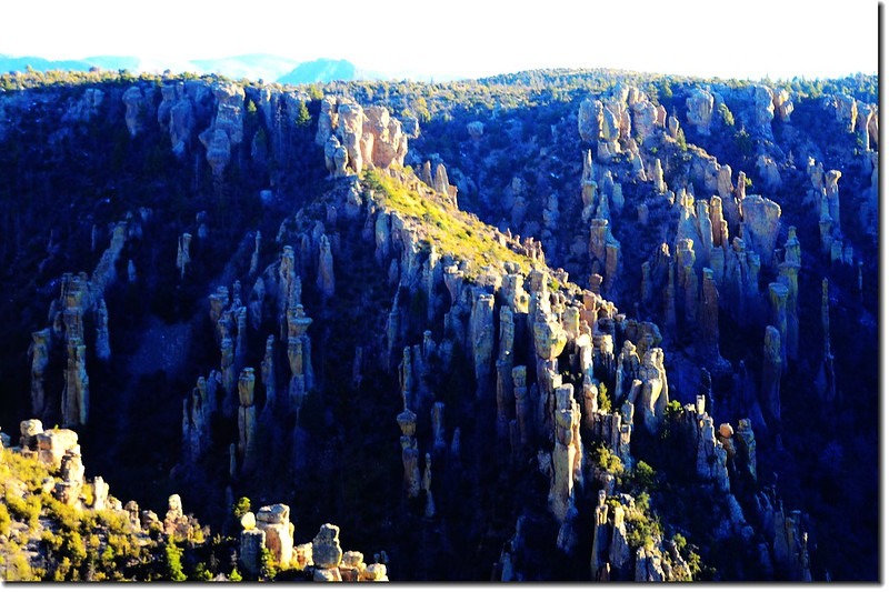 Chiricahua National Monument, AZ (15)