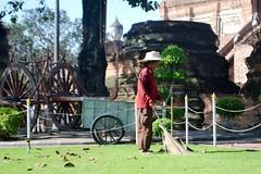 Gardener outside Wat Yai Chai Mongkhon