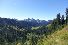 Mount_Rainier_National_Park-25.jpg