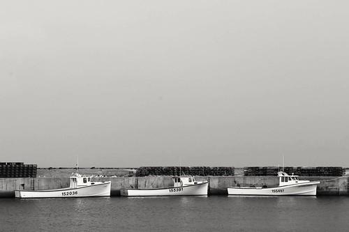 ocean canada water monochrome boats harbor blackwhite calm newbrunswick wharf lobsterseason