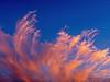 Evening cloud by Reinardina