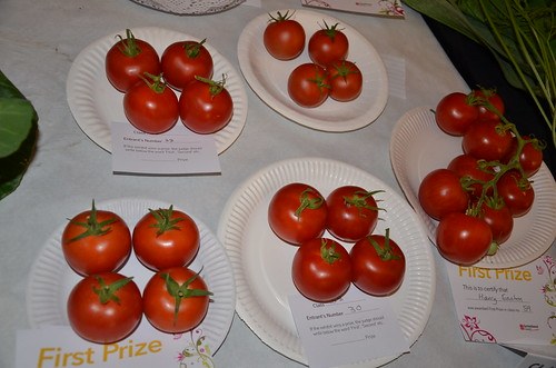 Whickham Flower Show Sept 15 (33)
