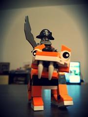 Pirate & Tiger