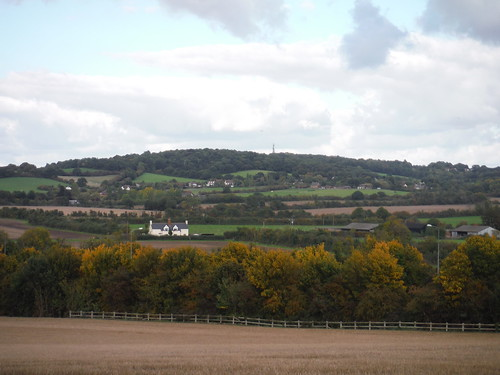 Langdon Hill, from Horndon