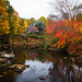 autumn - rural Maine - 10-13-15  01 by Tucapel