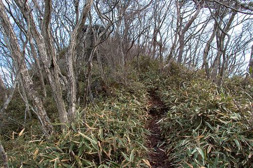Mountain trail, Utsushigatake.