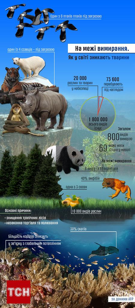 вимираючі тварини