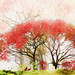 Autumnal Reverie ❖ Rêverie automnale by Chizuka2010