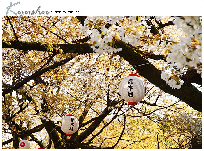 kyushu20140327026