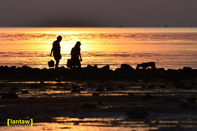 Shell Pickers at Sunset