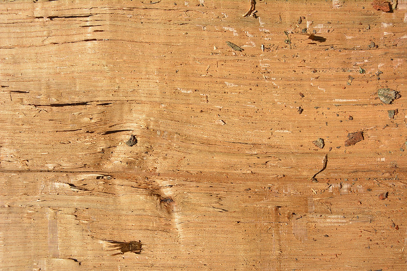 Wood Texture #5